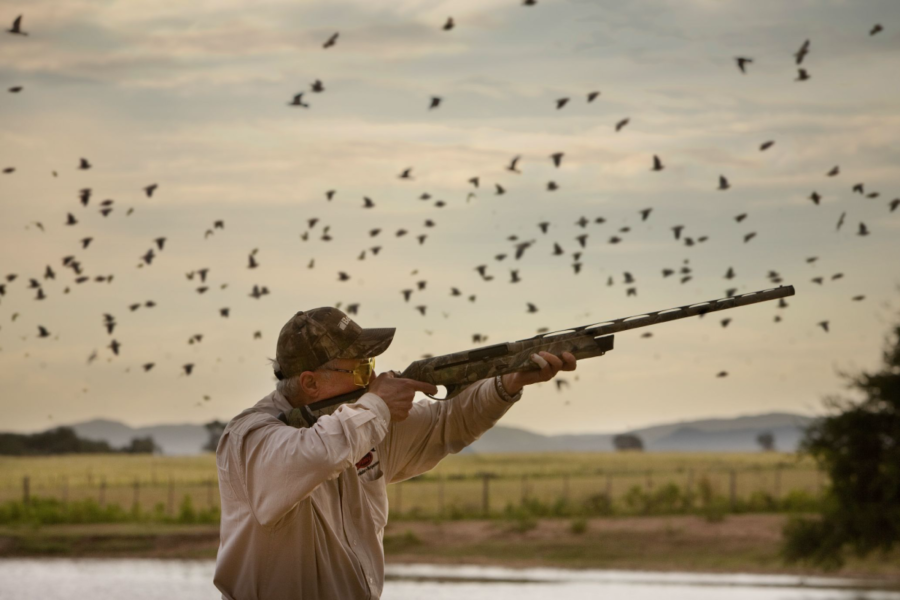 What To Bring Dove Hunting