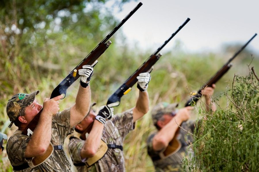 Rcc tubemaster dove hunting